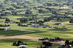 砺波平野特有の散居村。遠目にはカイニョ(屋敷林)が残っているように見えても、住宅地や倉庫が目立ちます。
