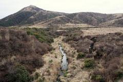 森林化の傾向が見られる阿蘇の草原