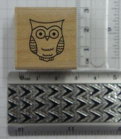 HS5 - Tiny Owl - € 2