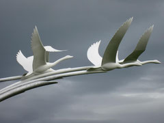 Children of Lir, Ballycastle