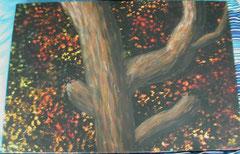 Lichtspiele im Baum 06/2009