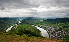 Die Mosel am Bremmer Calmont
