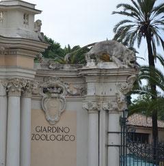 Bioparco di Roma, zoo, giardino zoologico