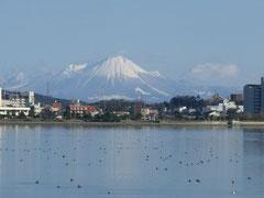 宍道湖越しの雪の大山