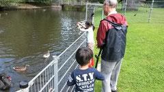 近所の公園で鳥と子供たちと戯れる父