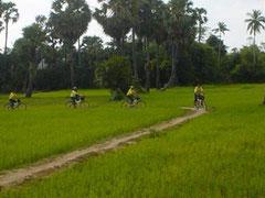 Kampong Pluk (village sur pilotis en période sèche)
