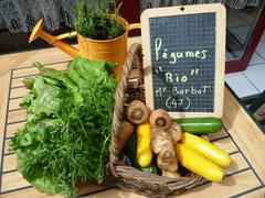 Nos légumes sont fournis par Françoise, Henri et Aurélien Barbot à Fongrave (47)