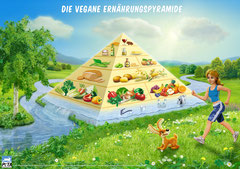 Die gesunde Ernährungspyramide
