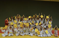 Judo Stockerau: Semesterabschluss 2017: Gruppenfoto