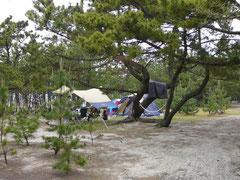慶野松原キャンプ場