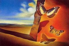 S. Dalì, Paesaggio di farfalle
