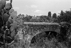 Puente Santa Clara.