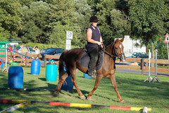 "Pony Stute ""Sylvana"" (Einstaller)"