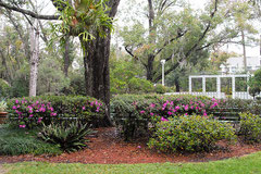 Mead Garden Amphitheater