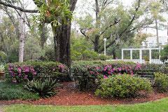 Mead Garden Ampitheater