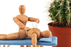 Physiotherapie Seefeld