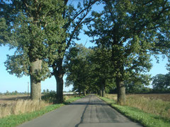 Trakehnen Ostpreußen Ostpreußenreise