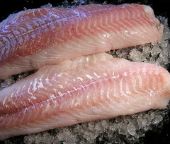 Fischkochkurse