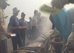 女川さんま祭り (写真提供:宮城県観光課)