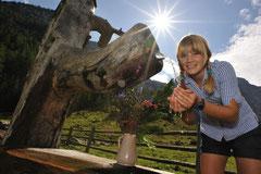 Sommerurlaub in Flachau