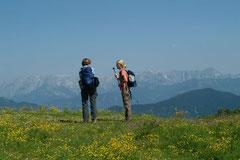 Wanderurlaub in Flachau
