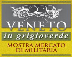 venetoingrigioverde.com