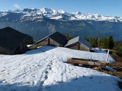 Panorama von Gibelegg mit Eiger, Mönch und Jungfrau