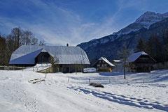 Tiefverschneite Winterlandschaft im Ballenberg