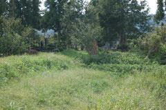四ツ塚の脇の墓地
