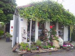 Laden Einfach Blume
