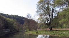 Angeln im Bayerischen Jura