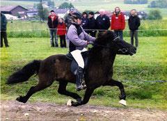 Gormur 2001  im Passrennen