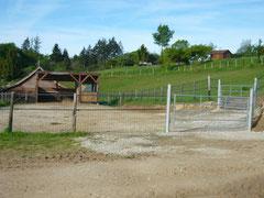 Parc de poulinage