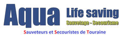 "Secourisme ""BNSSA"""