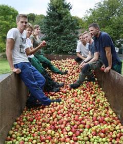 Fast voll: Die Äpfel werden in Containern gesammelt und bei den Bad Hönninger Fruchtsäfte zu Saft gepresst und abgefüllt (alle Bilder: K. Weddeling).