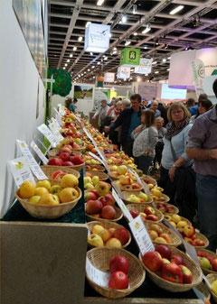 Wir zeigen über 200 Obstsorten