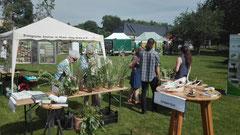 Gut besucht bei Sommerwetter: unser Stand beim Tag der Artenvielfalt