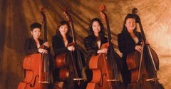contrabass quartetto Ladies