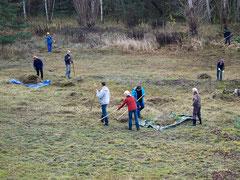 Die letzte Fläche für 2013: Am Trebelberg