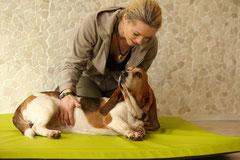 Dorn Breuss Hund Hamburg