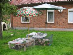 So werden Sonnenschirme zu Regenschirmen !