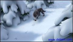 Следом прошёл волк оставляя свои следы.