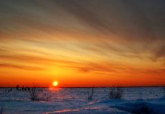 Фото с сайта: http://www.lifeisphoto.ru/photo.aspx?id=600108
