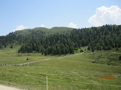 Alpe Di Loson