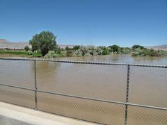 Green Rver - Hochwasser
