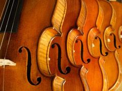 Streichinstrumente zur Auswahl