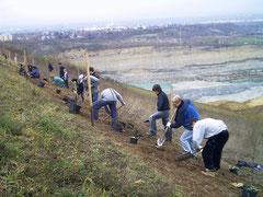 Aufpflanzung im Vielfaltshang Laubenheim