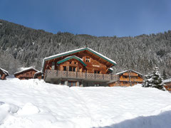 Chalet A Louer Roca Immobilier Châtel 14 personnes