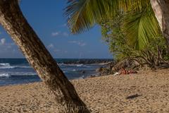 rincon vacation, rincon beaches, rincon surfing