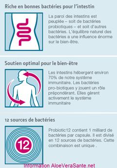 PROBIOTIC 12 de LR est le seul complément alimentaire du marché européen dont la composition est de 12 types de microbes bénéfiques